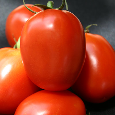 apple-tomato