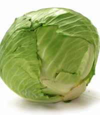 cabbage-cabbage