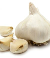 garlics1
