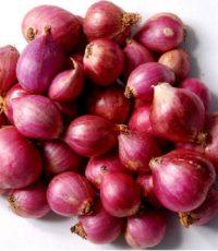 small-onion