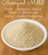 kuthiraivali-barnyard-millet